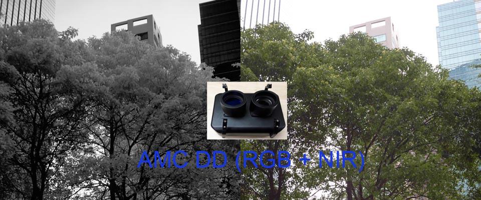 AMC-DD